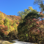 Destination: Blue Ridge, GA